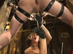 Tory Lane y Wild Bill, Mistress Tory Lane es sexy, imparable y tan creativo en su dominación que es difícil mantenerse al día con ella! Hoy ella castiga a wild bill para limpieza no adecuada de los puestos de su granero. Ella lanza sus bolas con su botas,
