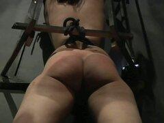 Deliciosa belleza de pelo negro obtiene humillado en juego BDSM kinky