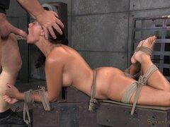 Ava Dalush es muy bueno aguantando a todo tipo de sexo BDSM juegos - Ava Dalush, Matt Williams