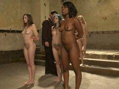 Cuatro esclavas sexuales impresionantes atados y humillados