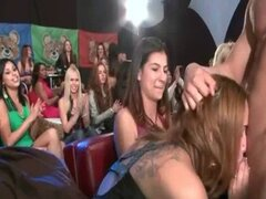 Guarras Amateur locas en el baile oso orgía Club - DancingBearOrgy.com