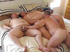 Hombres gay muy cachondos y gordos aman mamar sus pollas y follarse en un trio