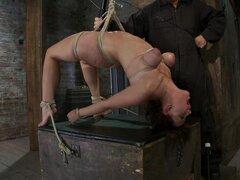 Brooke Lee Adams en Girl Next Door Sufferscategory 5 suspensión orgasmos extremos al sub espacio. -HogTied, Brooke Lee Adams es nuevo y en serios problemas. Ella está a punto de sufrir con la más dura esclavitud y Calvario extremo orgasmo que ella ha expe